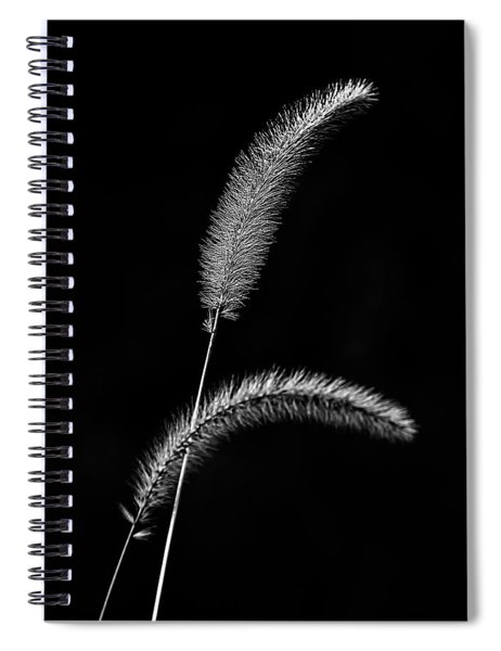 Grass In Black And White Spiral Notebook