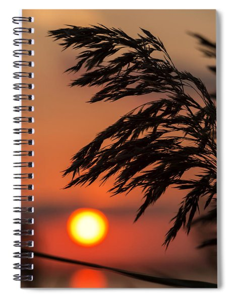 Grass Silhouette Spiral Notebook