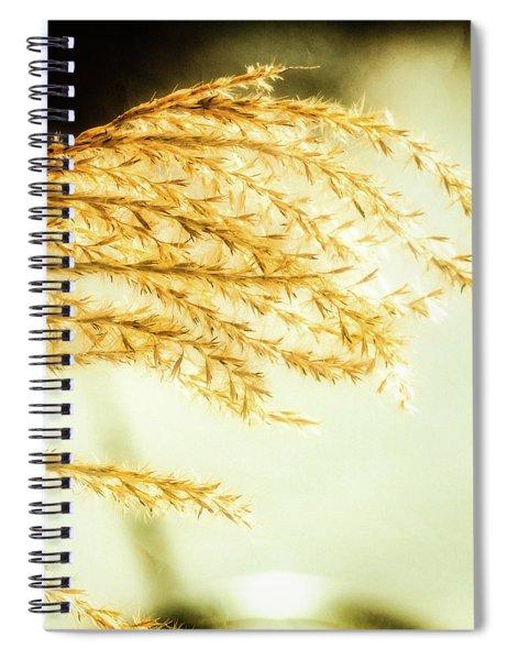 Grasses Of Gold Spiral Notebook