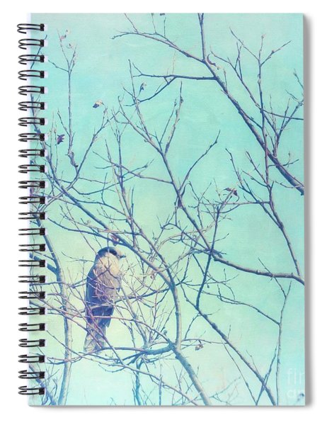Gray Jay In A Tree Spiral Notebook