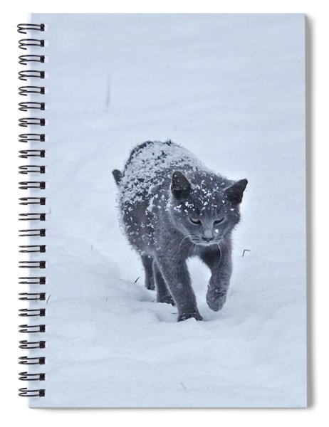 Gray On White Spiral Notebook