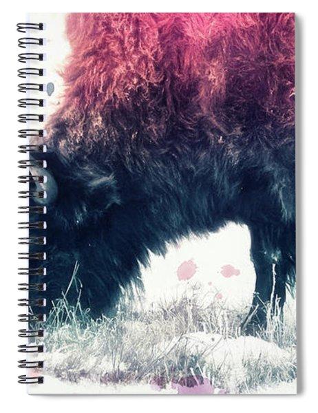 Grazing Bison Spiral Notebook