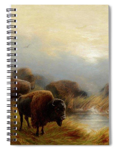 Grazing Buffalo Spiral Notebook