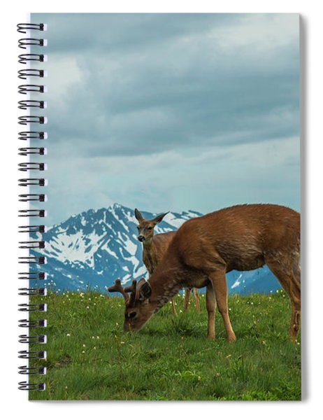 Grazing In The Clouds Spiral Notebook