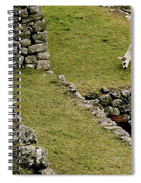 Grazing In Machu Picchu Spiral Notebook