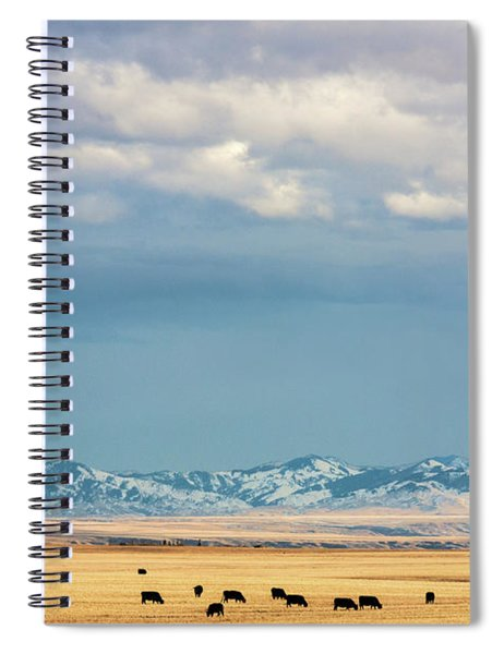 Grazing Near Highwood Spiral Notebook