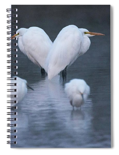 Great And Snowy Egrets 2328-012218-1cr Spiral Notebook