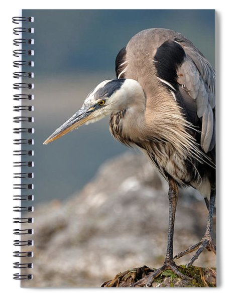 Great Blue Heron At The Ready Spiral Notebook