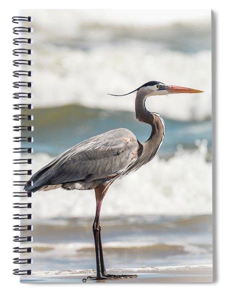 Great Blue Heron Profile Spiral Notebook