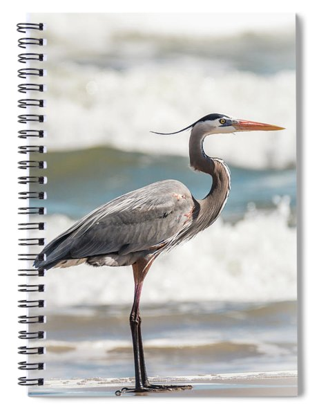 Spiral Notebook featuring the photograph Great Blue Heron Profile by Patti Deters