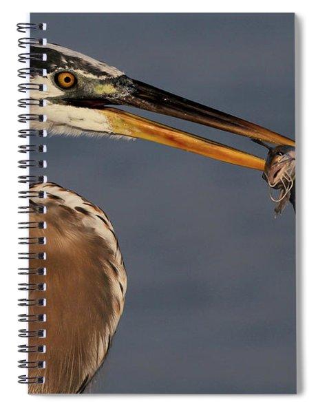 Great Blue Heron W/catfish Spiral Notebook