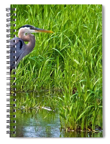 Great Blue Heron Waiting Spiral Notebook