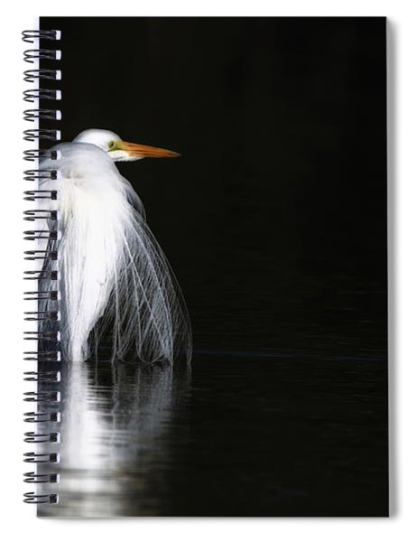 Great Egret 1035-010518-1cr Spiral Notebook