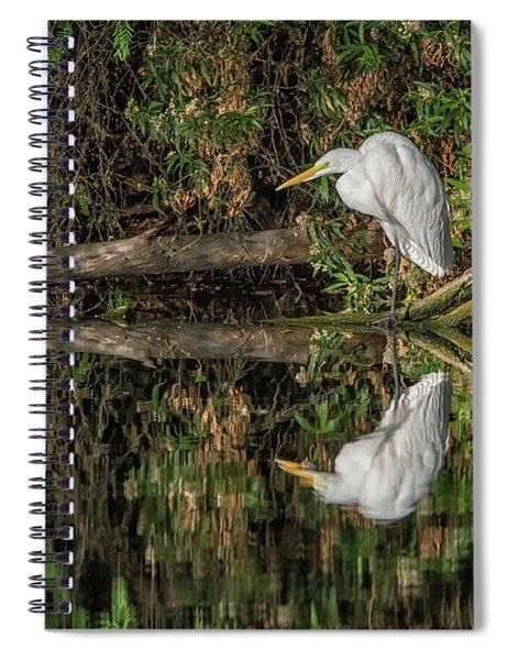 Great Egret 5525-040918-2h Spiral Notebook