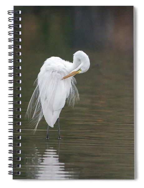 Great Egret Preening 6666-021218-1cr Spiral Notebook