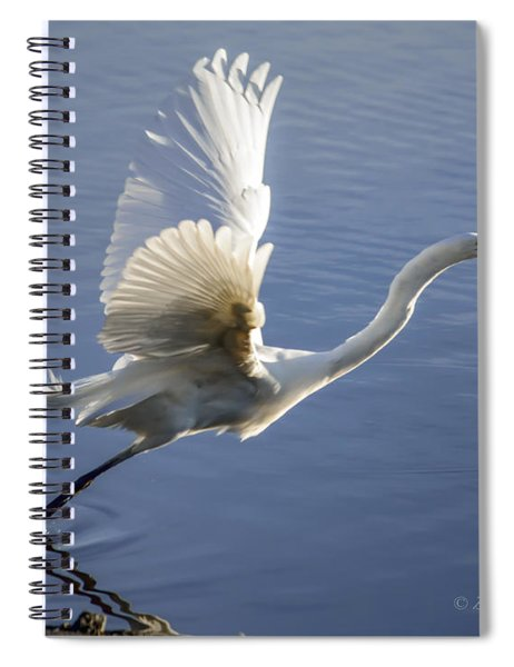 Great Egret Taking Flight Spiral Notebook