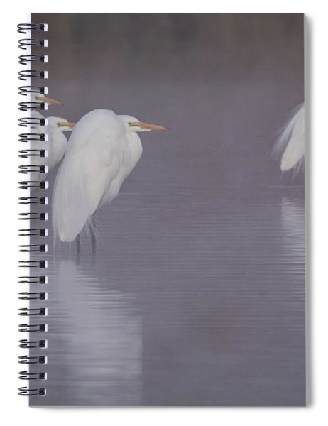 Great Egrets In The Mist 1966-012118-2cr Spiral Notebook