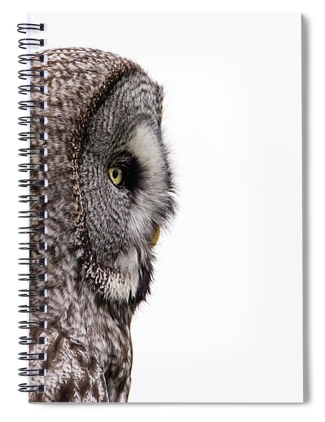 Great Grey's Profile On White Spiral Notebook