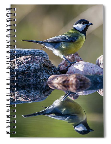 Great Tit On The Stone Spiral Notebook