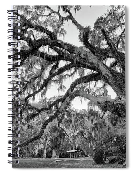 Great Tree Spiral Notebook