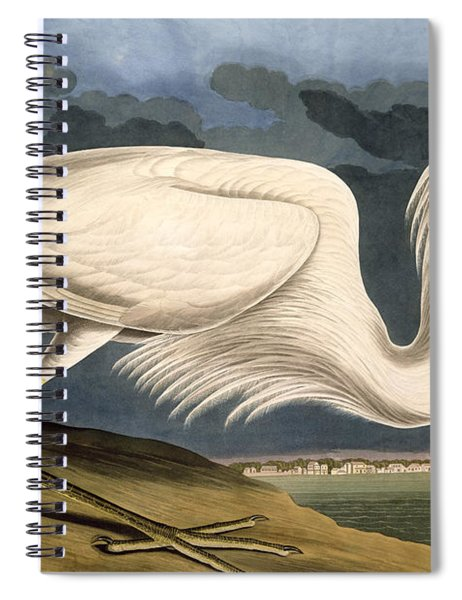 Great White Heron Spiral Notebook