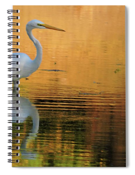 Great White On Gold Spiral Notebook