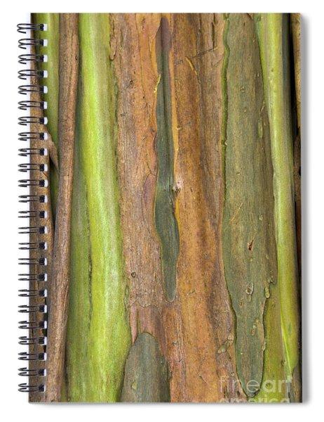 Green Bark 3 Spiral Notebook