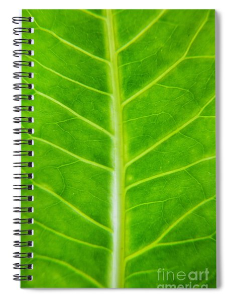 Green Botany -  Part 2 Of 3 Spiral Notebook