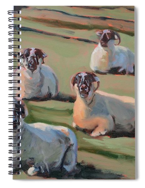 Green Hill Sheep At Rest Spiral Notebook