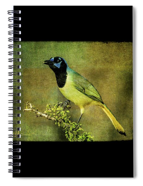 Green Jay With Textures Spiral Notebook
