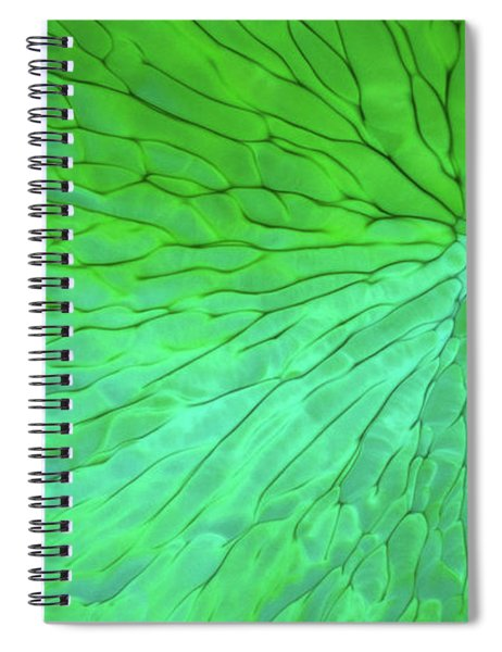 Green Pattern Under The Microscope Spiral Notebook