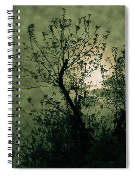 Green Sunset Spiral Notebook