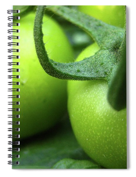 Green Tomatoes No.3 Spiral Notebook