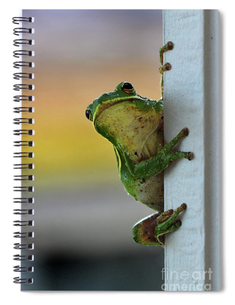 Green Tree Frog  It's Not Easy Being Green Spiral Notebook