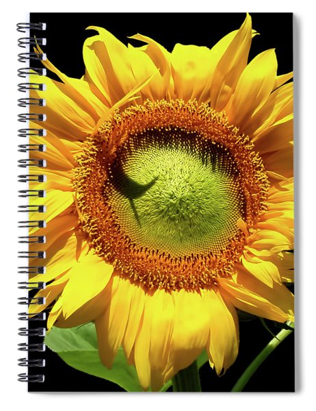 Greenburst Sunflower Spiral Notebook