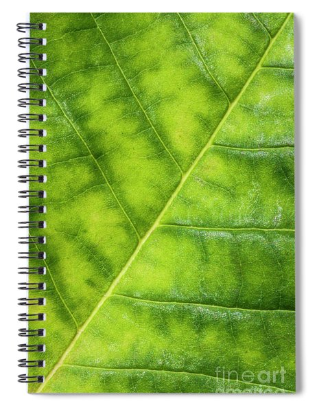 Greenleaf Spiral Notebook
