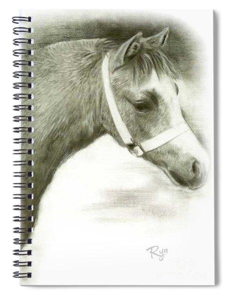 Grey Welsh Pony  Spiral Notebook
