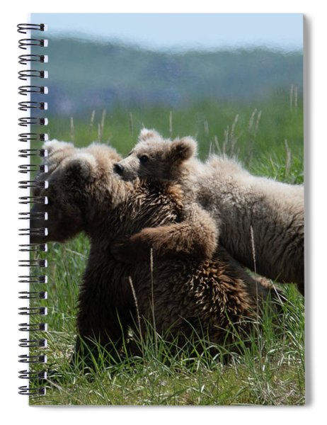 Grizzly  Mother And A Cub In Katmai National Park Spiral Notebook