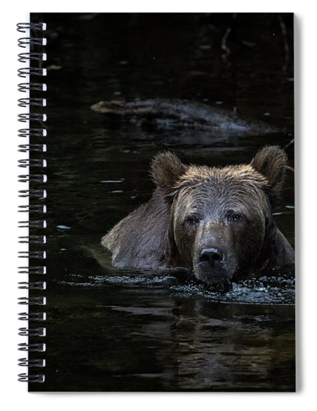 Grizzly Swimmer Spiral Notebook