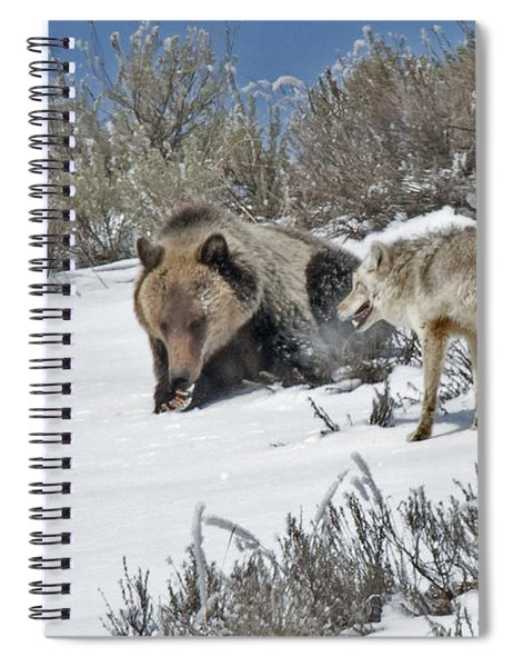 Grizzly With Coyote Spiral Notebook