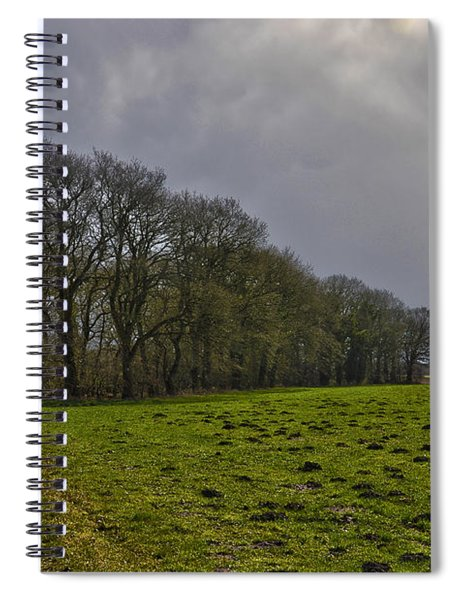 Group Of Trees Against A Dark Sky Spiral Notebook