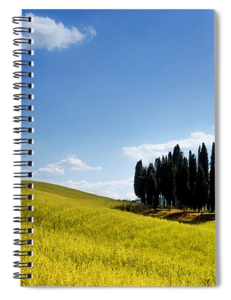 Group Of Tuscan Cypresses Spiral Notebook