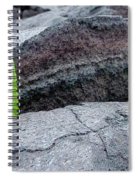 Grow Where You Are Planted Spiral Notebook
