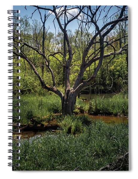 Growning From The Marsh Spiral Notebook