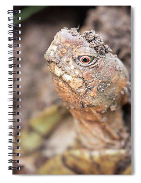 Grumpy Spiral Notebook