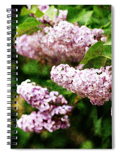 Grunge Lilacs Spiral Notebook