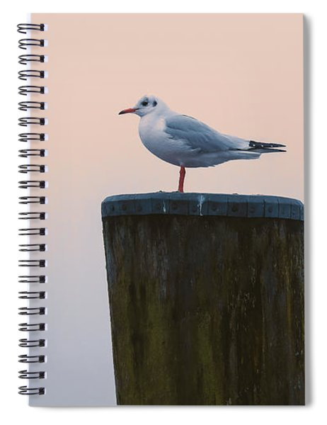 Gull And Fog Spiral Notebook