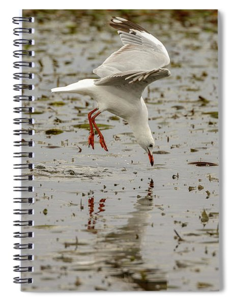 Gull Fishing 01 Spiral Notebook