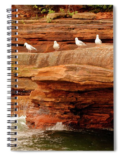 Gulls On Outcropping Spiral Notebook