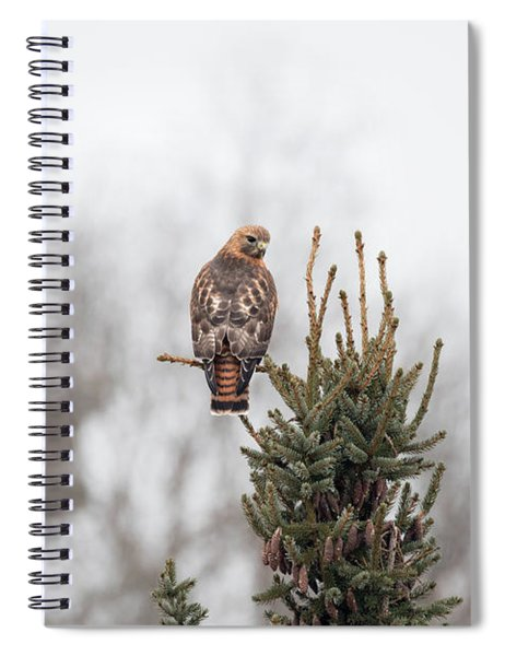 Hal Hanging Out 2 Spiral Notebook